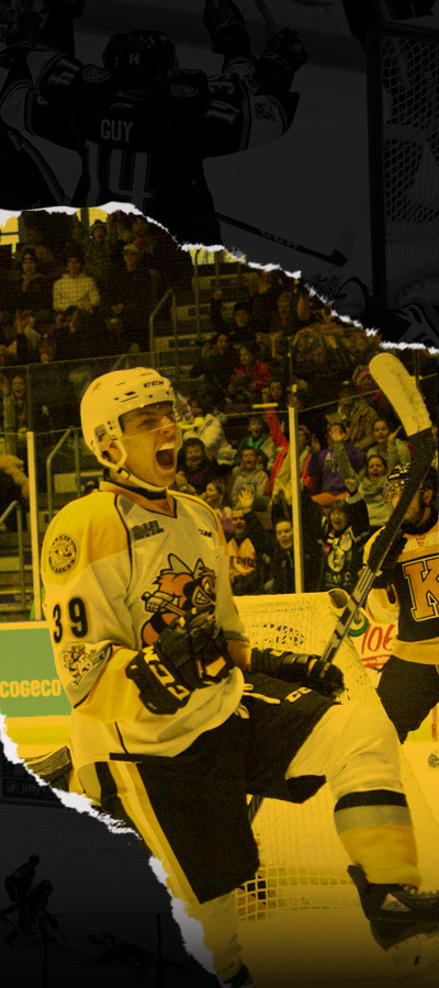Sarnia Sting – Official site of the Sarnia Sting
