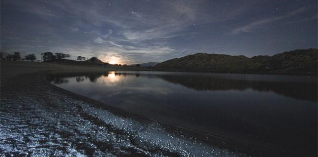 Desertdaze_night_625