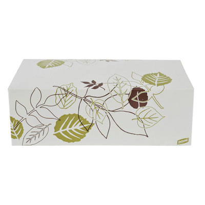 Dixie Paper Carryout Cartons