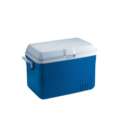 Rubbermaid Commercial Deluxe 48-Quart Hinged-Lid Ice Chest