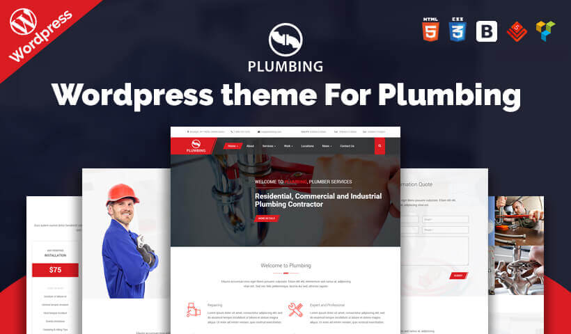 WordPress Themes for Plumbers