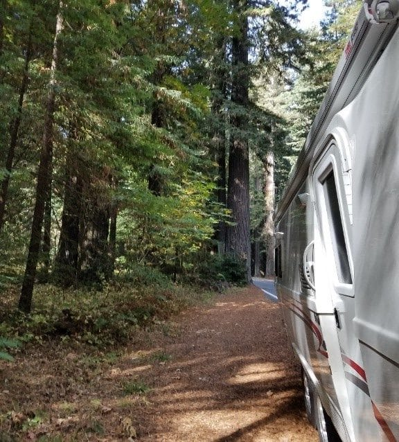 Oliver travel trailers journey to redwoods forest