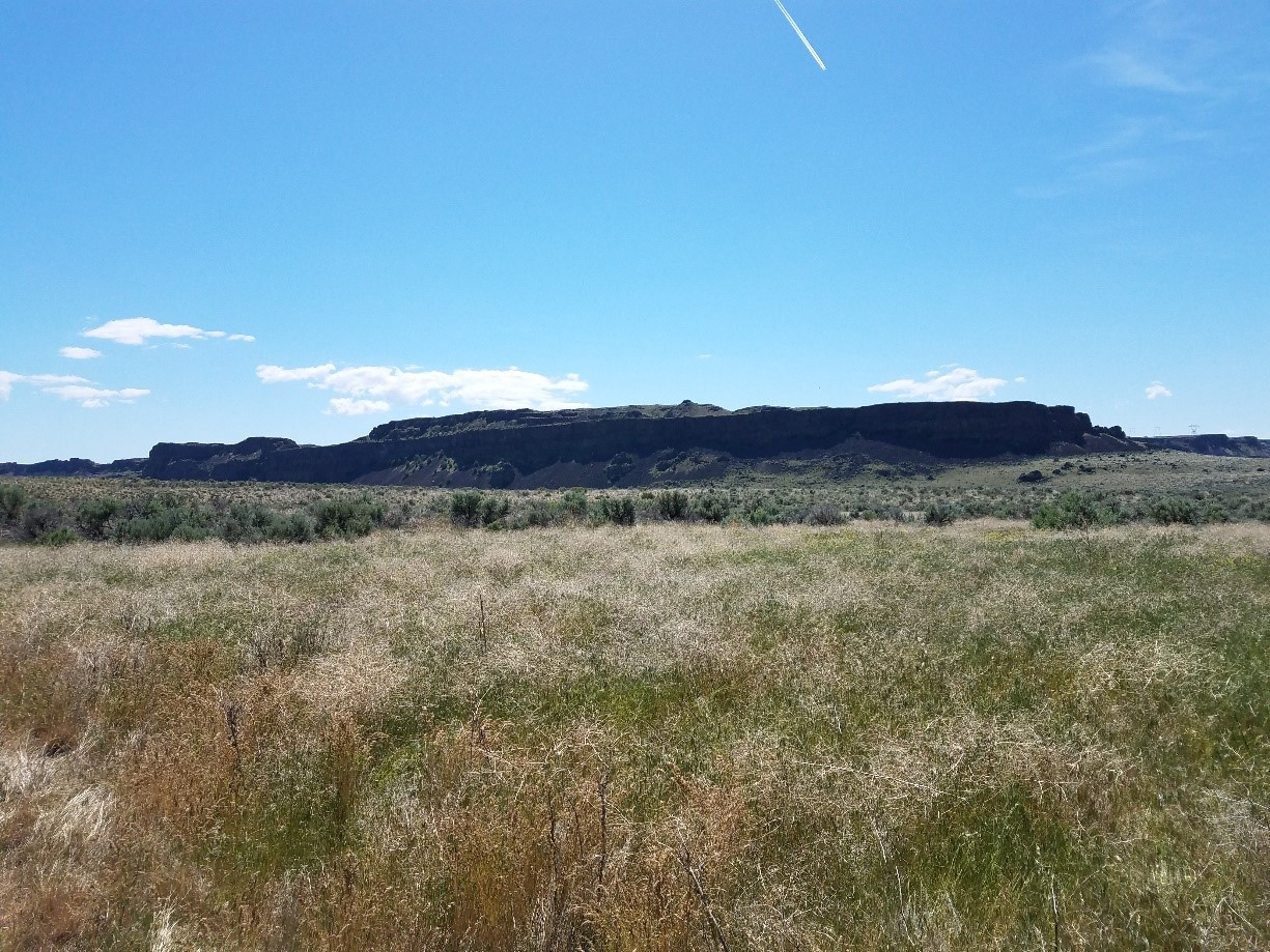 blog-scablands-3-4-2
