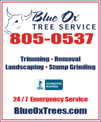 Website for Blue Ox Tree Service & Landscaping, LLC
