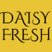 Website for Daisy Fresh Professional Cleaning Service