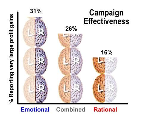 neuro chart