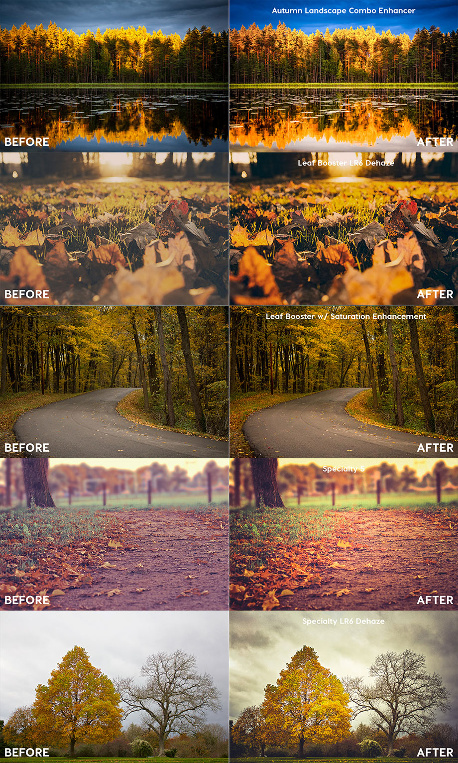 Contrastly_Autumn_Fall_LR_Presets-new