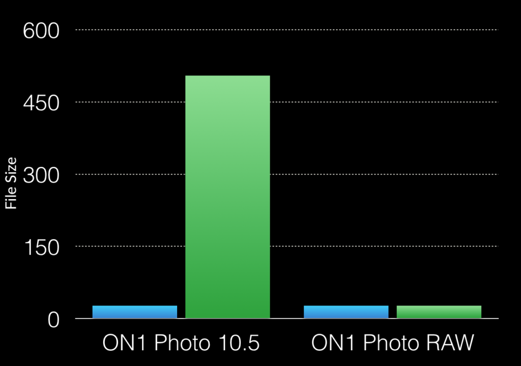 Computer Memory and Photo RAW – ON1