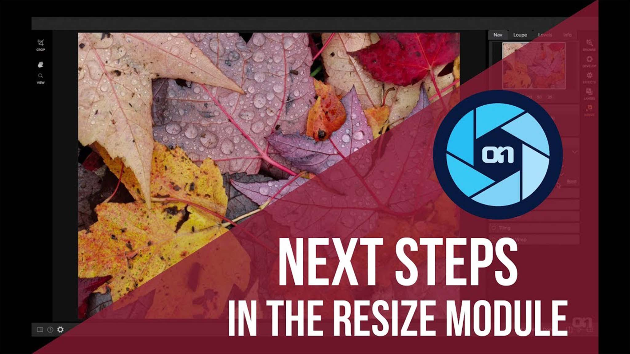 Next Steps in the Resize Module