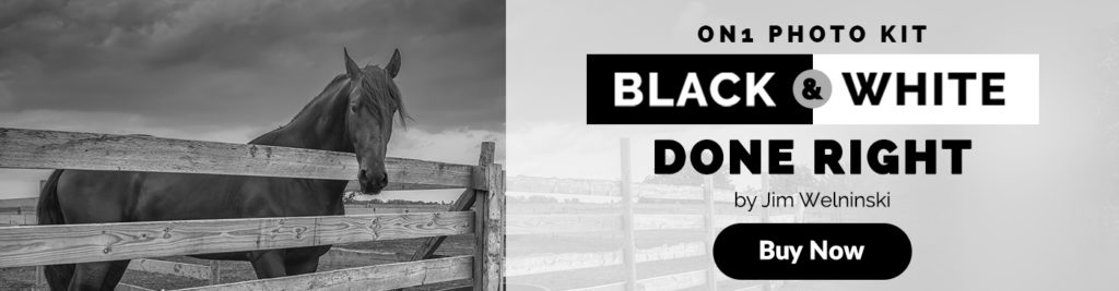 This new on1 photo kit features in depth video lectures and training on the foundations and fundamentals of black white photography