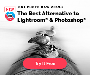 ON1 Photo RAW 2019.5 - The Best Alternative to Lightroom and Photoshop