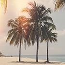ON1 Beach Presets
