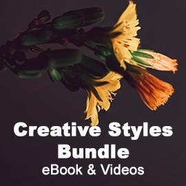 Creative Styles Bundle