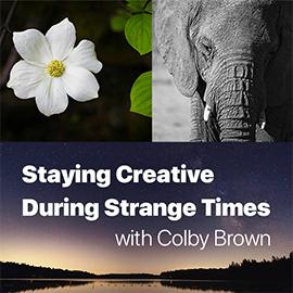 ON1 Photo Kit: Staying Creative During Strange Times