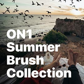 ON1 Summer Brush Collection