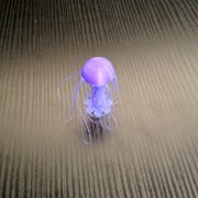 Jellyfish customizable - drooloops
