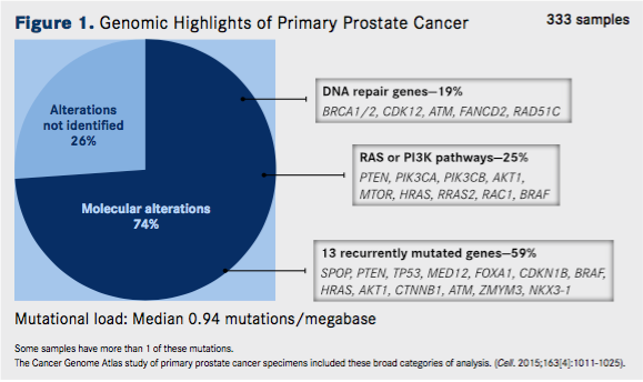 Genomic Highlights of Primary Prostate Cancer