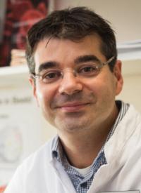 Arnon P. Kater, MD, PhD