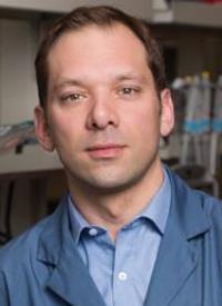 Mathieu Lupien, MD