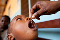 World economists agree: child nutrition is a best buy in development