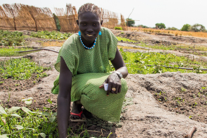 Amazing Africa: The resilient farmers of South Sudan