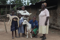 Lovisa's story: How 1 goat pulled an HIV+ family out of poverty