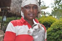For the Kitomary family, Heifer trainings ensure long term success