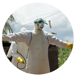dr j soka crop
