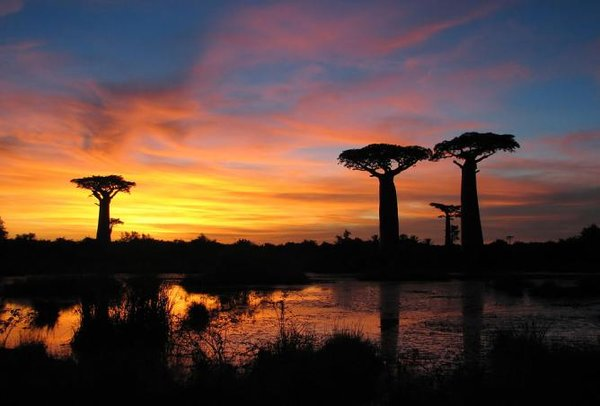 Africa: 12 Places to go in 2015