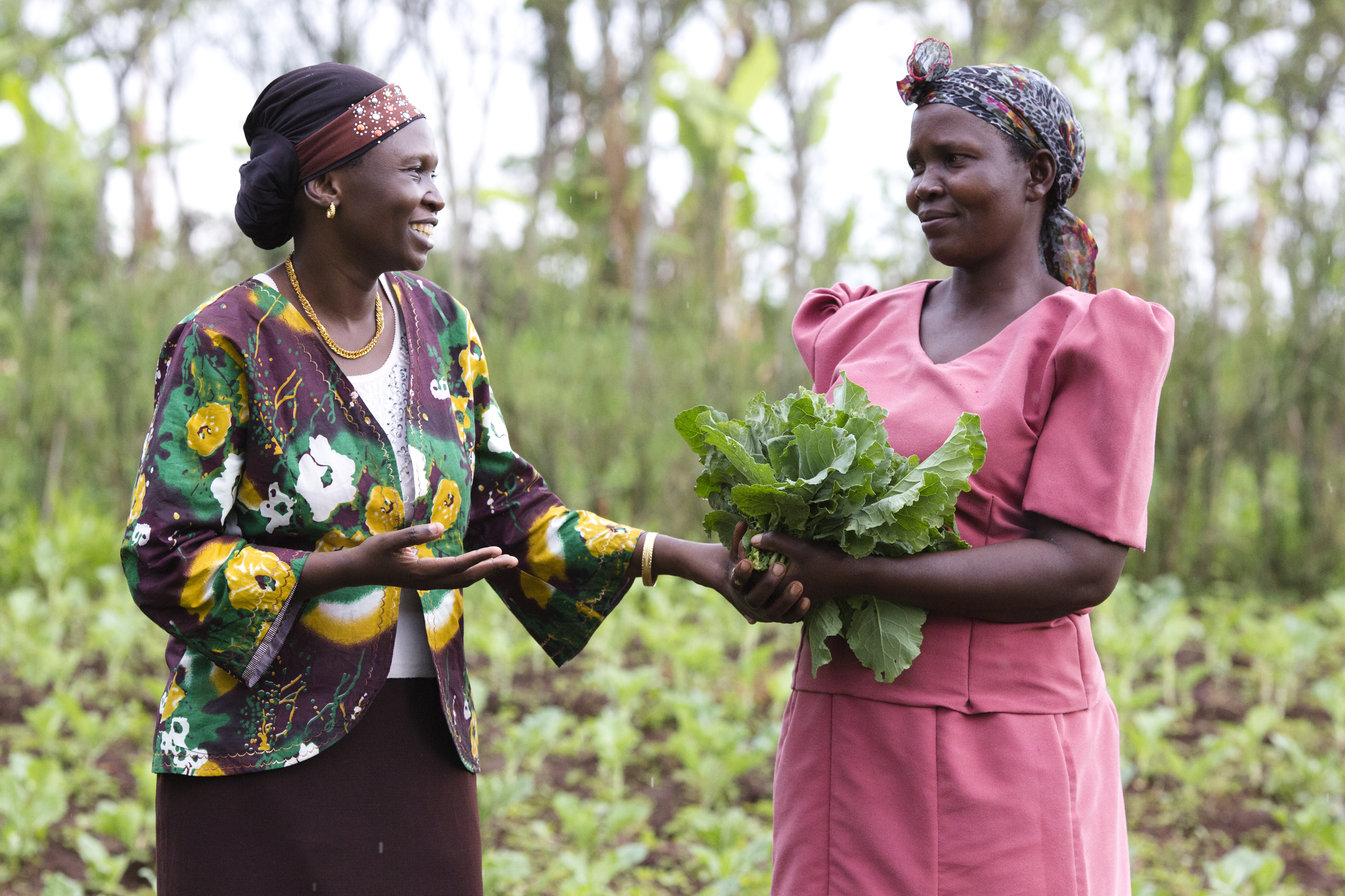 Fighting Fistula in Kenya: Two women's endeavor to end discrimination