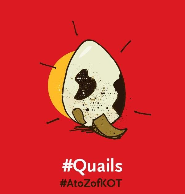 Q is for #Quails