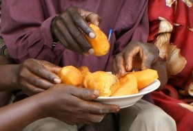 This orange food is fighting malnutrition