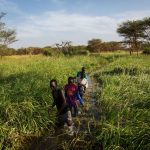 Dictor Arak, 15, leads three friends -- Miakol Kiir, 14, Guor Path, 14, and Kir Buth, 15 -- to check their net at a swamp near Yida where they fish on the weekends. The boys, all displaced by the fighting in South Sudan, fish to raise money for school fees and books.