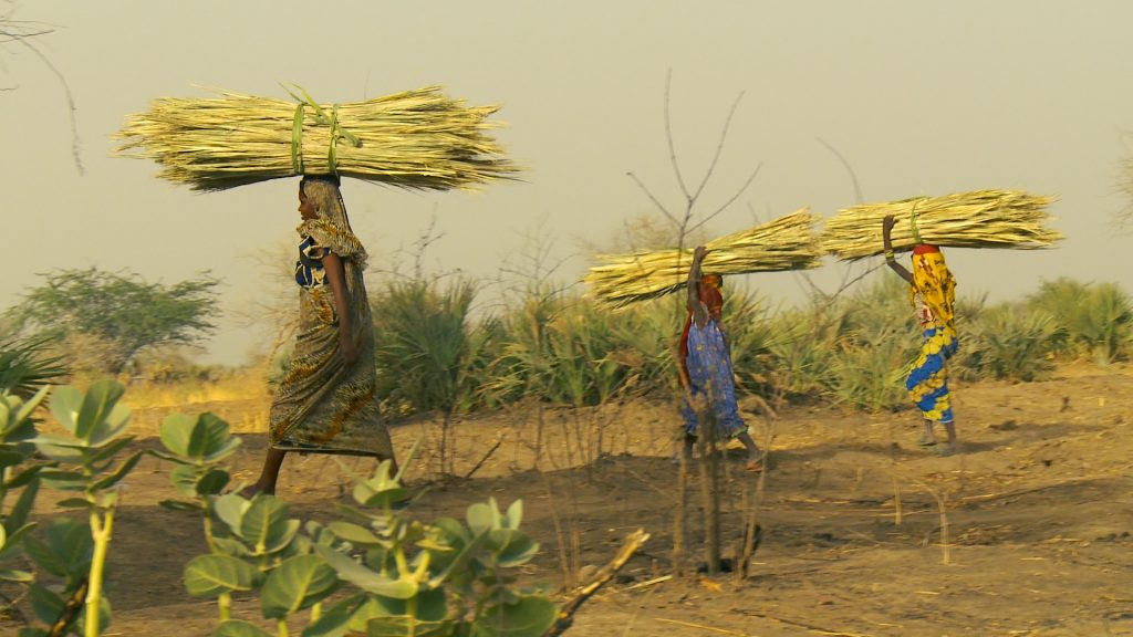 A Chadian woman and her two daughters carry heavy loads as part of their daily responsibilities.