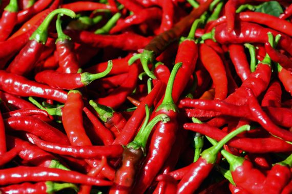 Kenya's herders fire up a hot new crop: chili peppers