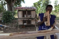 ONE Africa Award finalist 2012: How banana plants are helping Ugandan girls stay in school longer