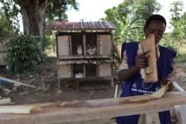 ONE Africa Award finalist 2012: How banana plants are helping Ugandan girls stay in school longer