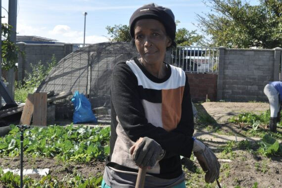 Meet Mama Nomonde, Cape Town's urban farmer growing food security