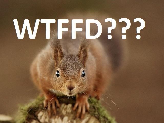 #WTFFD?, oder was ist Financing for Development?