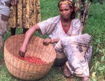 Landwirtschaftsförderung gegen Armut. Die Top-Themen des Tages.