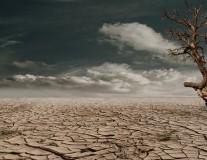 FAO: Hohe Klimaschäden in Entwicklungsländern. Die Top-Themen des Tages.
