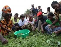 Appel  à candidature pour le prix ONE pour l'Afrique 2013 : 100000 dollars à gagner !