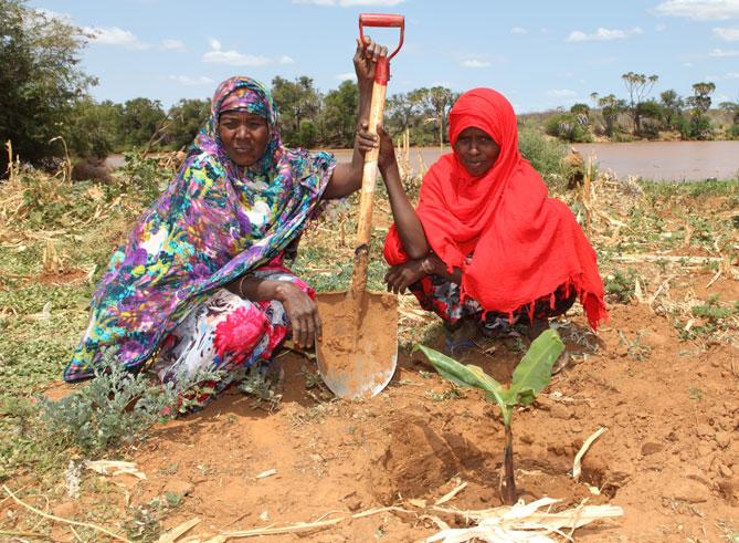 Pourquoi la pauvreté est sexiste: le secteur de l'agriculture