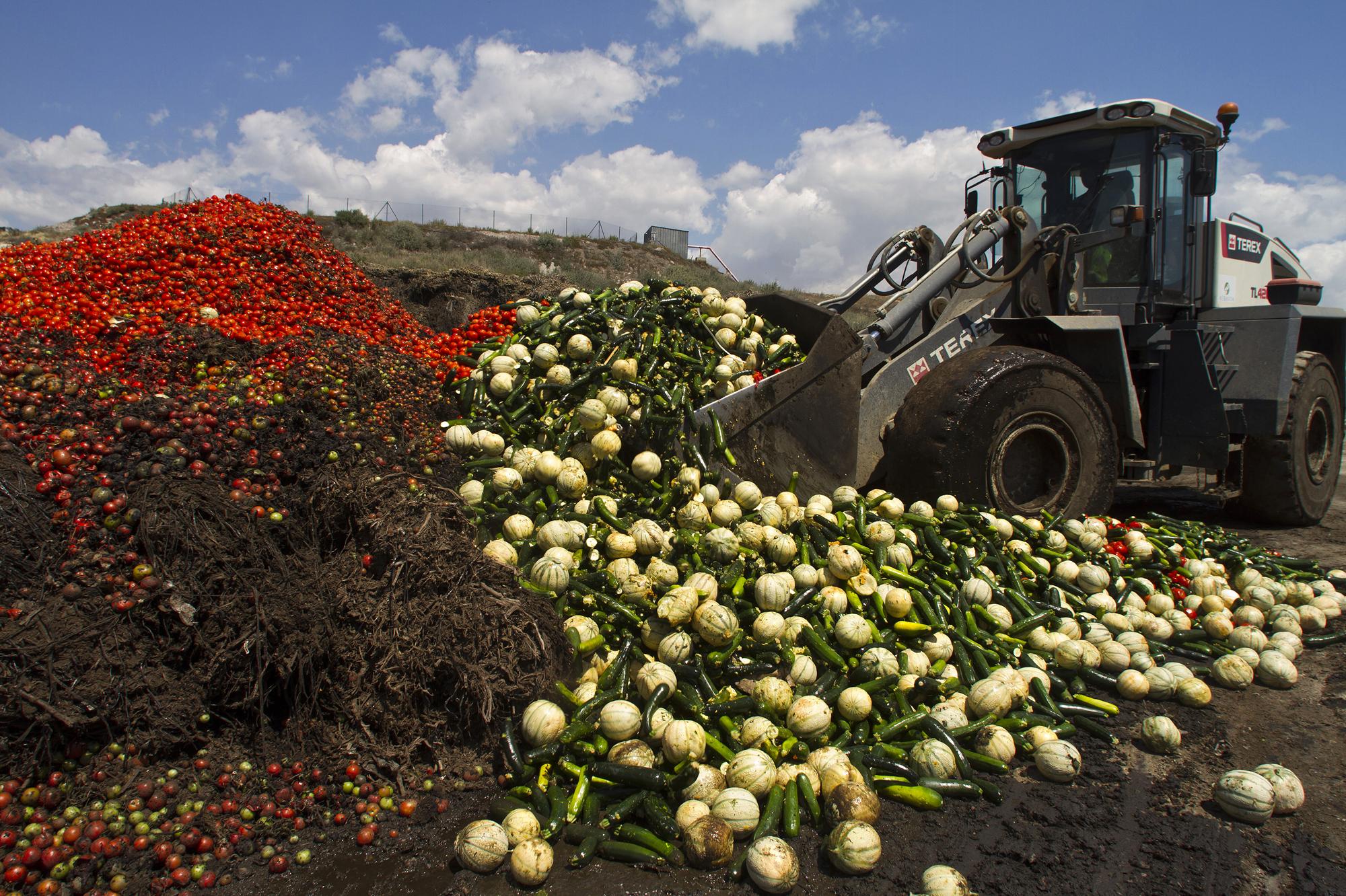 Gaspillage alimentaire : un problème global