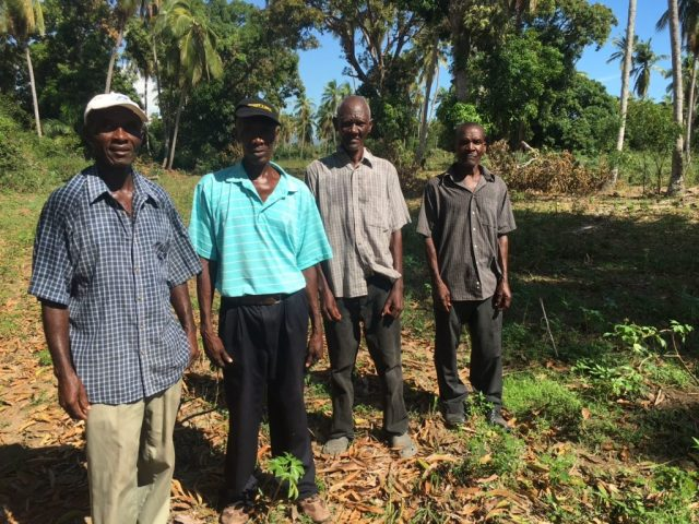 A Haïti, les familles tentent d'effacer les traces de l'ouragan Matthew.