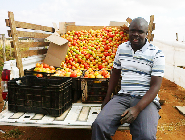 """""""I'm a farmer by accident but I am loving it"""" – meet the new generation of African farmers"""