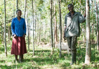 Education in Kenya: One farming family's determination to send their kids to school