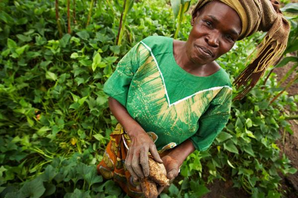International Women's Day: The secret of 3 female farmers' success