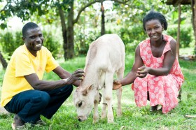 Kenyan harvest: happy children, a new business and a wedding celebration