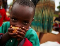 Holding G7 leaders to account on commitment to lifting 500m people out of hunger by 2030